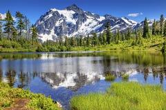 Soporte Shuksan Washington los E.E.U.U. de los árboles de hoja perenne del lago picture foto de archivo