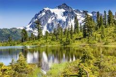 Soporte Shuksan Washington los E.E.U.U. de los árboles de hoja perenne del lago picture Imagenes de archivo