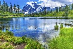 Soporte Shuksan Washington los E.E.U.U. de los árboles de hoja perenne del lago picture Foto de archivo libre de regalías