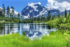 Soporte Shuksan Washington los E.E.U.U. de los árboles de hoja perenne del lago picture Imagen de archivo