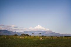 Soporte Taranaki, el Fuji de Nueva Zelanda Fotografía de archivo
