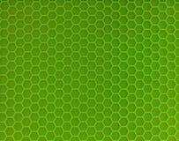 Soporte verde claro para caliente fotos de archivo