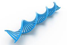 Soportes de la DNA Imagenes de archivo