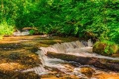 Sopot rzeka i swój kaskady Zdjęcia Royalty Free