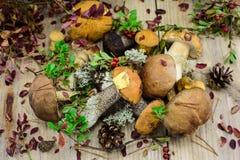 Sopp plocka svamp med höstsidor på träskrivbordet Royaltyfri Fotografi