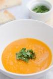 Soppa för Butternutsquash Arkivbild