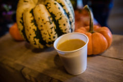 Soppa för Butternutsquash Royaltyfri Bild