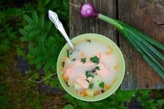 Soppa för fisksoppafisk i natur på en gammal trätabell Arkivfoton