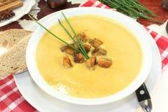 Soppa för söt kastanj royaltyfri foto