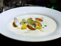 Soppa för Venus musslakräm royaltyfri fotografi