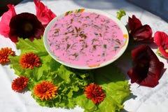 Soppa från beta Royaltyfri Bild