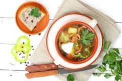 Soppa från fältchampinjoner med en potatis och gräsplaner royaltyfri foto