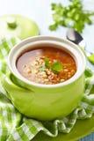 Soppa med den röda linsen, pasta och grönsaker Arkivbilder