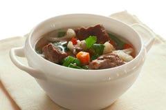 Soppa med kött och grönsaker royaltyfria bilder