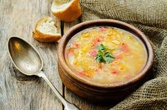 Soppa med laxen, potatisar och hirs fotografering för bildbyråer
