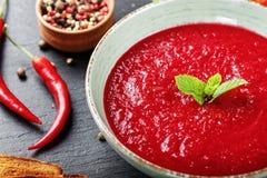 Soppagazpacho med kryddor Royaltyfri Bild