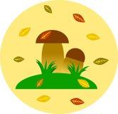 Soppchampinjoner som växer i gräs Fotografering för Bildbyråer