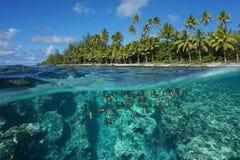 Sopra e sotto la Polinesia francese della superficie dell'acqua fotografie stock libere da diritti