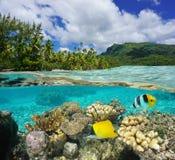 Sopra e sotto la Polinesia francese di superficie della laguna Immagine Stock