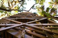 Sopra gli alberi Immagini Stock
