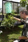 Sopra il giardino a terra Fotografia Stock Libera da Diritti