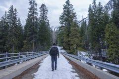 Sopra il ponte nelle montagne Immagine Stock Libera da Diritti