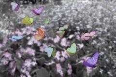 sopra il prato delle farfalle Fotografia Stock Libera da Diritti