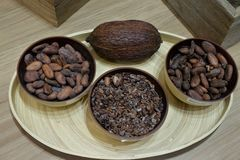 Sopra il punto di vista dei fagioli tostati del cacao in ciotole fotografie stock libere da diritti