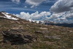 Sopra il treeline fotografie stock libere da diritti