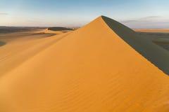 Sopra la duna di sabbia Immagini Stock