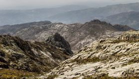 Sopra Rocky Mountains Fotografia Stock