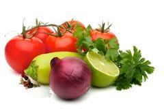 Sopro ajustado à salsa Imagem de Stock
