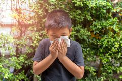 Sopro asiático do menino seu nariz com no tecido, estação de gripe, febre de feno fotos de stock