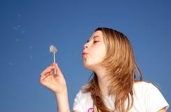 Sopro da mulher um dente-de-leão Imagens de Stock Royalty Free