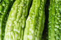 Sopropo Background. Sopropo is related to the cucumber and is also a immature fruit Stock Photos