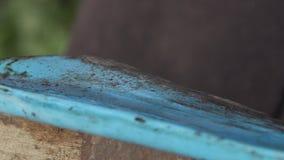 Sopros de martelo em um fim liso da placa de metal acima filme