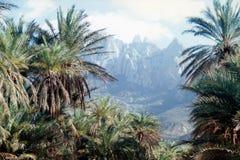 Soqotra wyspa Zdjęcia Royalty Free