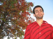 Sorba-albero ed uomo felice Fotografia Stock Libera da Diritti