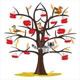 Sorba dell'albero dell'illustrazione di vettore entro l'autunno tardo illustrazione di stock