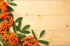 Sorbe avec la feuille verte sur la table en bois blanche Vue supérieure avec l'espace de copie Photo libre de droits