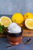 Sorbet мороженого лимона служил для десерта с листьями мяты и l Стоковое фото RF