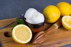 Sorbet мороженого лимона служил для десерта с листьями мяты и l Стоковые Фото