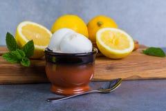 Sorbet мороженого лимона служил для десерта с листьями мяты и l Стоковая Фотография