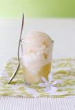 sorbet яблока Стоковое Изображение RF