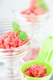 Sorbet Royalty Free Stock Photo