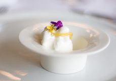 Sorbet. A fancy ice cream sorbet served on a white plate Stock Photos