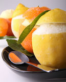 Sorbet dessert Royalty Free Stock Photography
