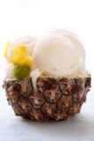 Sorbet ice cream Stock Photos