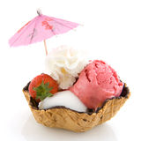 Sorbet ice cream Royalty Free Stock Images