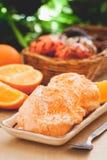 Sorbet orange de crème glacée  Photographie stock libre de droits